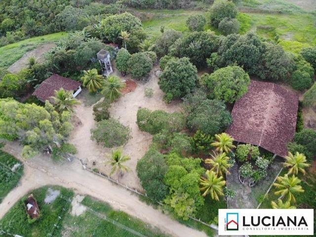Vendemos Propriedade em Aldeia - 1 ha (Cód.: ald56) - Foto 2