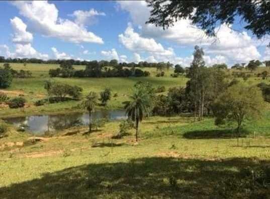 Oportunidade - Linda fazenda á venda R$850 mil . 700 hectares! Possibilidade parcelamento - Foto 7