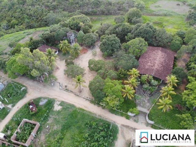 Vendemos Propriedade em Aldeia - 1 ha (Cód.: ald56) - Foto 13