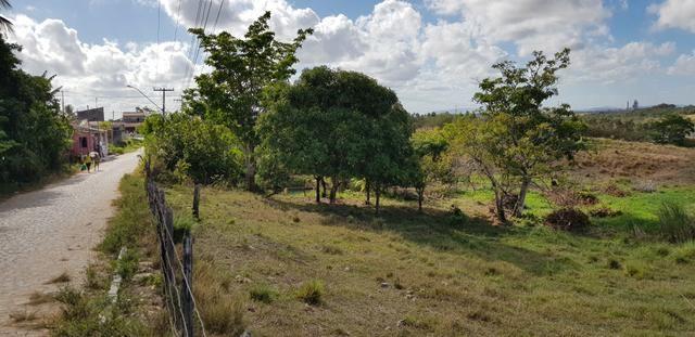 Vendo lote de chácara com uma area de 3.640m2 ou 28 x 130 financiamento direto com o dono - Foto 5