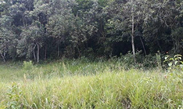 Excelente Propriedade em Guapimirim Estrada Rio Teresópolis 48.000m2 R$ 170 mil - Foto 10