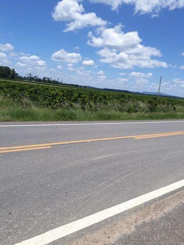 Vendo propriedade em Jaguaré