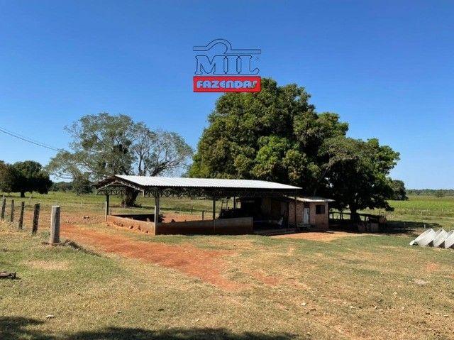 Fazenda 150 Alqueires ( 726 hectares ) Formoso do Araguaia-TO - Foto 6