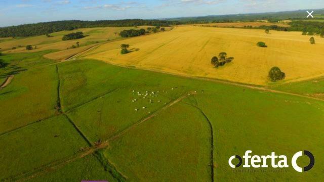 Fazenda na Lapa - Foto 3
