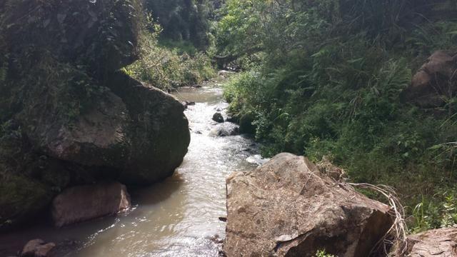 Chácara em Fazenda Souza - Foto 11