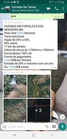 """Fazenda em """"fortaleza do nogueira"""" - Foto 6"""