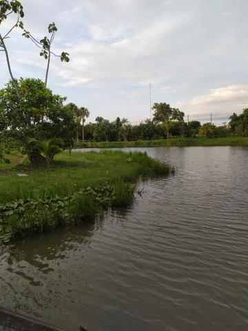 Mirante do Lago 2/4 - Foto 11