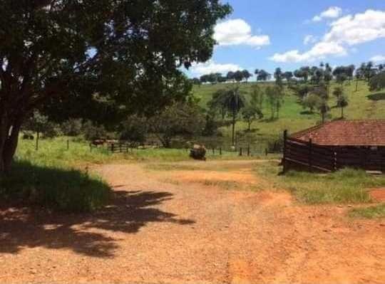 Oportunidade - Linda fazenda á venda R$850 mil . 700 hectares! Possibilidade parcelamento - Foto 5