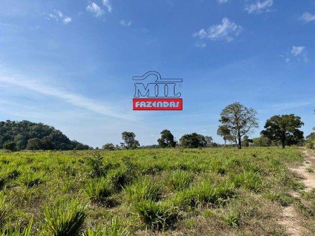 Fazenda 150 Alqueires ( 726 hectares ) Formoso do Araguaia-TO - Foto 3