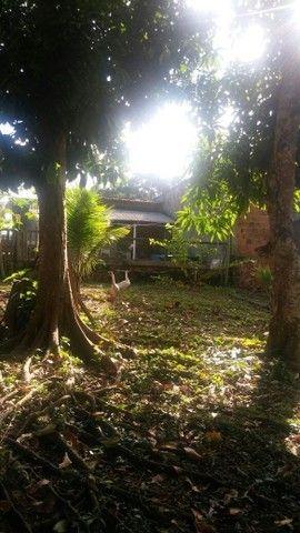 Vendo casa com terreno grande - Foto 7