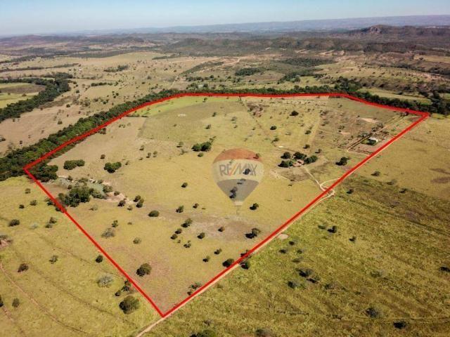 4 chácaras de 4 de hectares à venda por de r$ 320.000,00 cada em unaí/mg - Foto 2