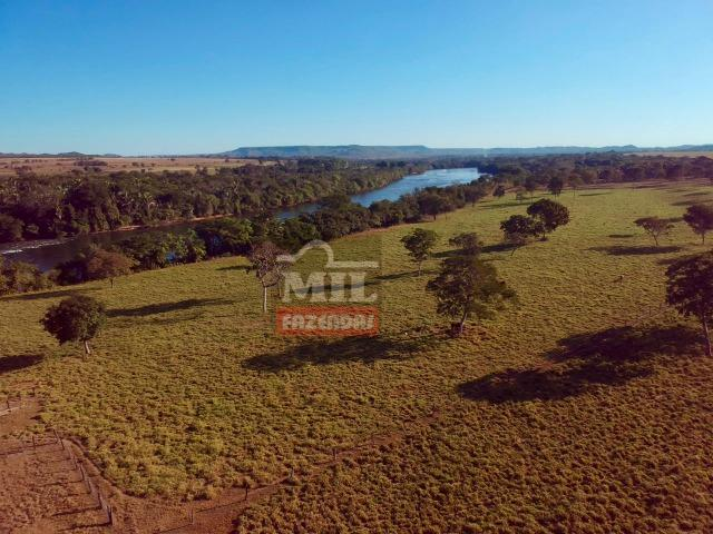 Fazenda 22 Alqueires (106 hectares) Nova Xavantina-MT - Foto 15