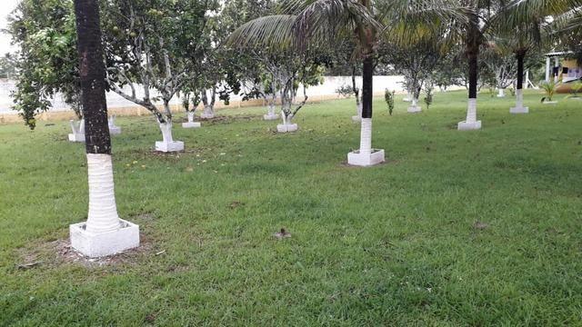 Linda chácara no ramal do Gavião - Foto 18