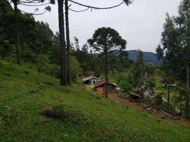 Lindo Sítio com Vista Para o Vale Rio Rufino/Urupema - Foto 13
