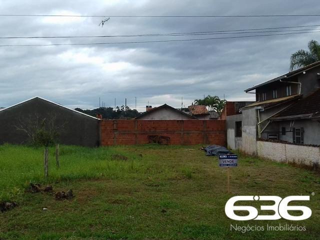 Terreno | Balneário Barra do Sul | Costeira - Foto 7