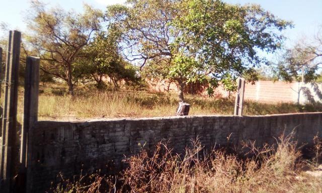Terreno em Pium - Foto 4