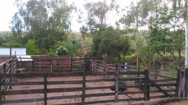 Vende-se Sítio no município de Lagamar 56 Hectares - Foto 12