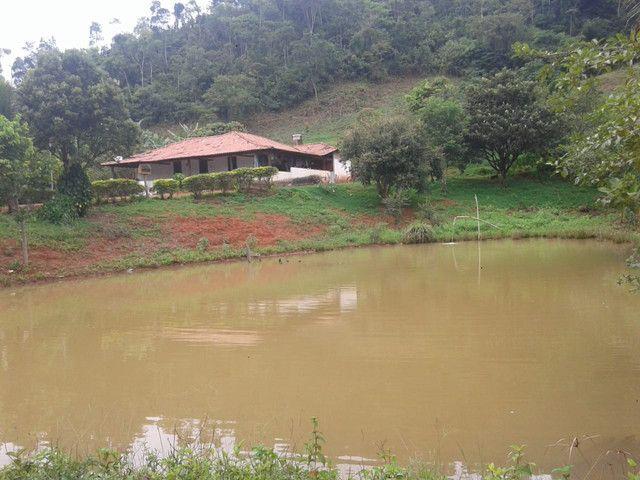 Sítio à venda com 3 dormitórios em Zona rural, Piranga cod:13135 - Foto 4