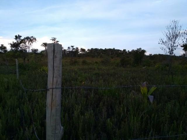 Terreno em Trancoso e Itaipu de dentro - Foto 6
