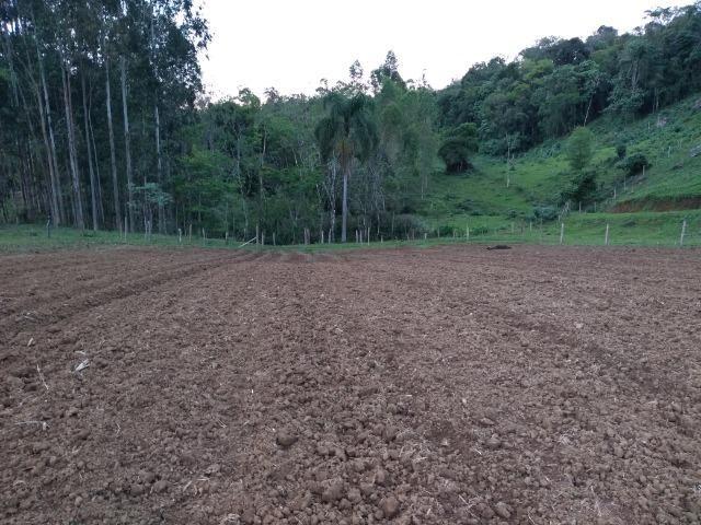 Sitio Palmital Taió-SC 4 hectares - Foto 4