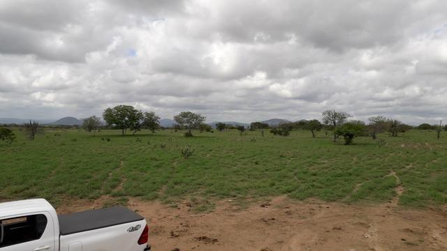 Fazenda em Iaçu-Ba - Foto 12