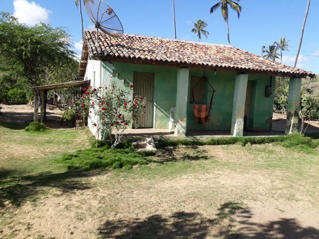 Ótima propriedade de 1.5 hectare, a 7 km da BR de Pombos-PE