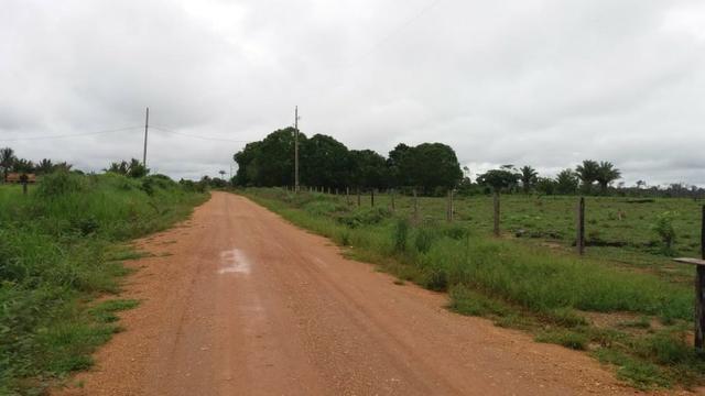 Fazenda - Porto Belo Linha 120 - 900 hectares - Foto 14