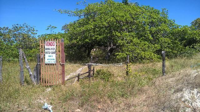 Terreno Barra da Sucatinga (próximo à praia)- Beberibe (CE) - Foto 6