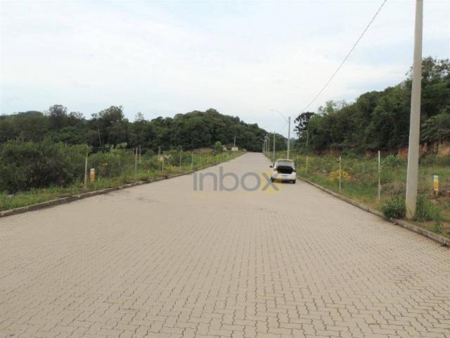 INBOX VENDE: Excelentes terrenos de 200 m² no Vila Nova, venha conferir; - Foto 6