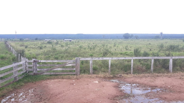 Fazenda 14.364 hectares em Alta Floresta-MT - Foto 5