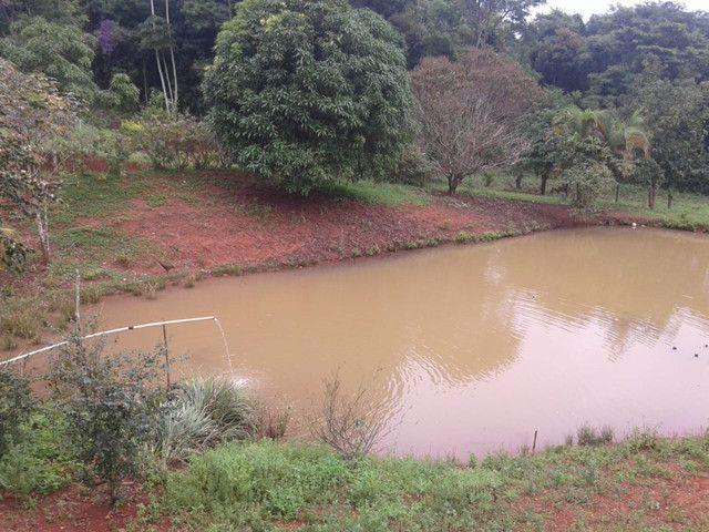 Sítio à venda com 3 dormitórios em Zona rural, Piranga cod:13135 - Foto 5