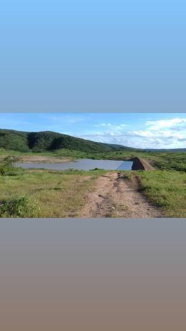 Fazenda com 150 hectares em cachoeira do sapo na br 304 zap. * - Foto 3