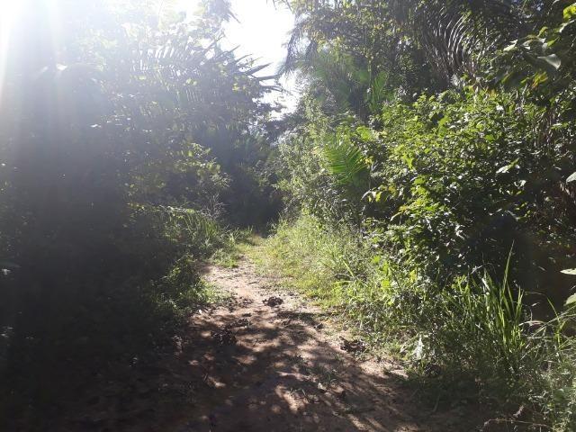 Fazenda entre Jangada e Rosário Oeste com 784 Hectares - Foto 16