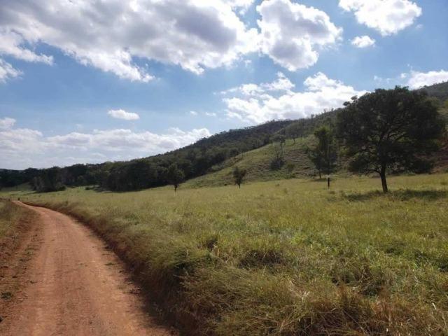 P53998 - Terreno rural com 178.841 m², na cidade de Pitangui/MG - Foto 6
