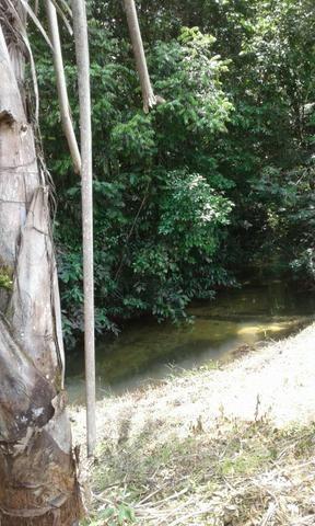 Sítio Santo Antônio do Tauá med.: 180 x 800 só R$ 150 mil - Foto 4