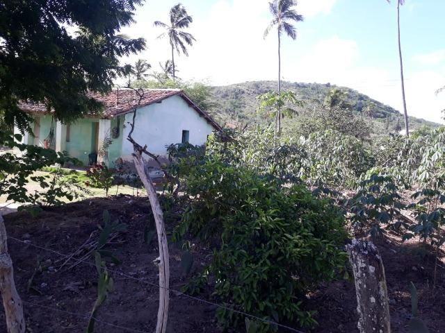 Ótima propriedade de 1.5 hectare, a 7 km da BR de Pombos-PE - Foto 2