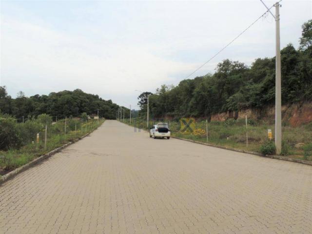INBOX VENDE: Excelentes terrenos de 200 m² no Vila Nova, venha conferir; - Foto 5