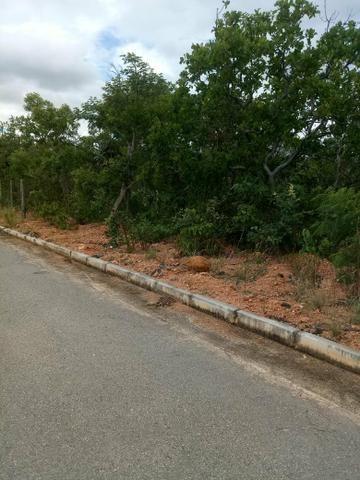Vendo lote 1.000 metros plano Baldim bairro Santa Luzia - Foto 12