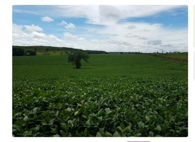 Vendo Fazenda Centro do Maranhão com excelente localização,terra teor argila 40/55% - Foto 8