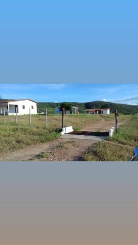 Fazenda com 150 hectares em cachoeira do sapo na br 304 zap. * - Foto 6