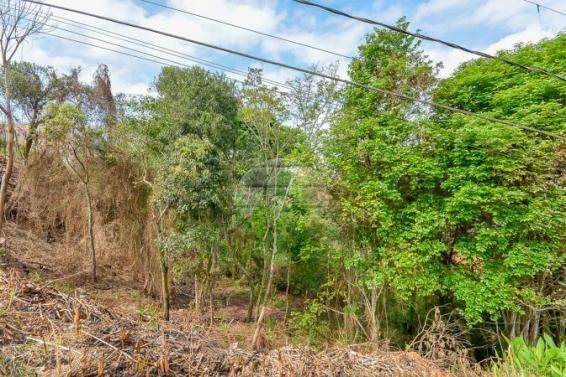 Terreno à venda em Gralha azul, Fazenda rio grande cod:151562 - Foto 10