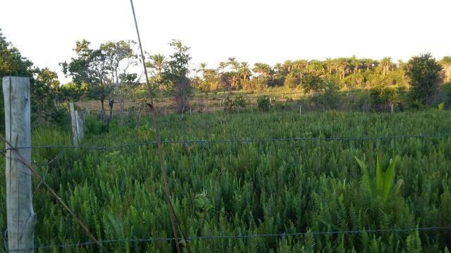 Terreno em Trancoso e Itaipu de dentro