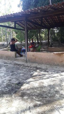 Sítio Santo Antônio do Tauá med.: 180 x 800 só R$ 150 mil - Foto 9