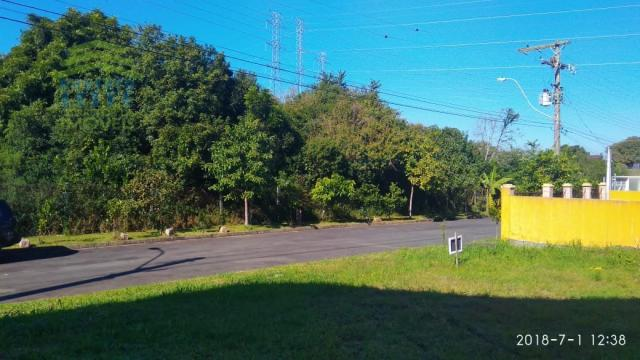 Terreno, Protásio Alves, Porto Alegre-RS - Foto 4