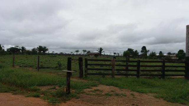 Fazenda - Porto Belo Linha 120 - 900 hectares - Foto 2