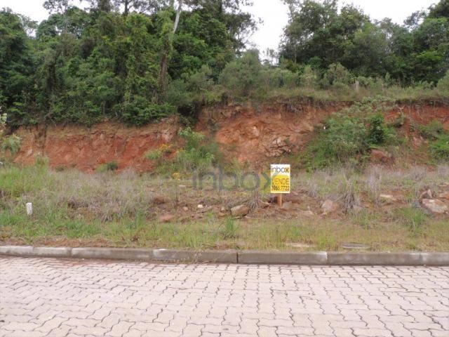 INBOX VENDE: Excelentes terrenos de 200 m² no Vila Nova, venha conferir; - Foto 3