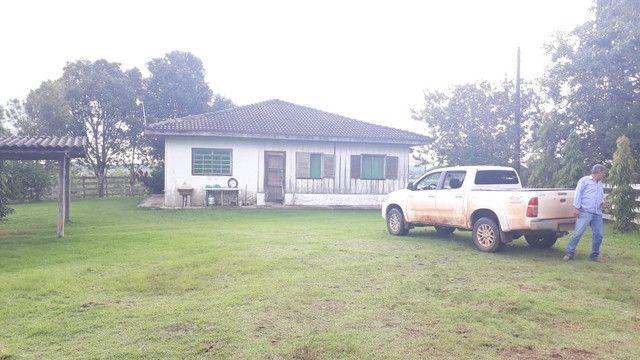 Fazenda 14.364 hectares em Alta Floresta-MT - Foto 7