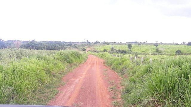 Fazenda 14.364 hectares em Alta Floresta-MT - Foto 4