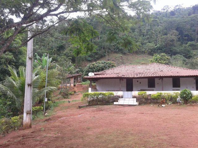 Sítio à venda com 3 dormitórios em Zona rural, Piranga cod:13135 - Foto 9