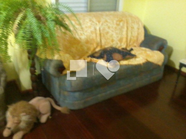 Casa à venda com 2 dormitórios em Jardim carvalho, Porto alegre cod:REO420475 - Foto 18